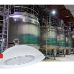 Новинка IEK: светильники для пищевого производства ДСП 8002 IP69